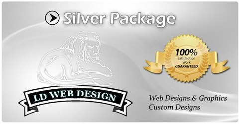Silver Web Design Package